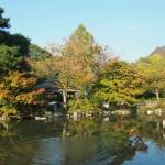 円山公園 11月1日