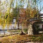 本満寺 11月