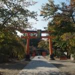 平野神社 11月5日