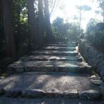 三天皇陵への参道
