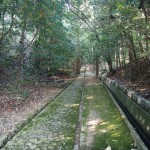 一条・堀河天皇陵への参道