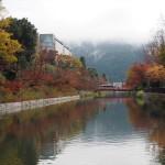 琵琶湖疎水 11月