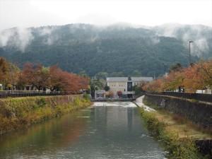 琵琶湖疏水沿い