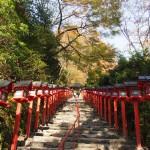貴船神社 11月7日