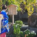 祇園 かにかくに祭 11月