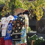 祇園白川 かにかくに祭