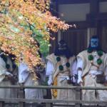 愛宕念仏寺 11月10日