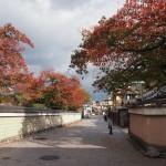 祇園 11月13日
