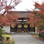 醍醐寺 11月12日