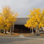 頂妙寺 11月