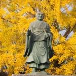 頂妙寺 11月12日