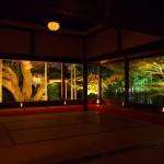 宝泉院 ライトアップ 11月