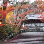 鍬山神社 11月13日