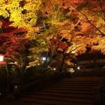 鍬山神社 ライトアップ 11月