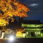 神護寺 ライトアップ 11月14日