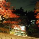 神護寺 ライトアップ