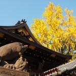 護王神社 11月17日