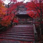 鍬山神社 11月