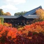 東福寺 11月19日
