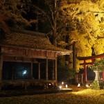 岩戸落葉神社 11月