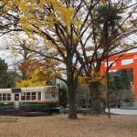 岡崎公園 11月20日