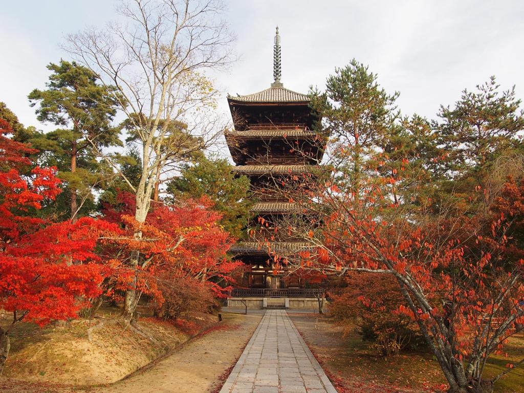 紅葉が飾る仁和寺   京都旅屋 ~...