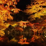 醍醐寺 ライトアップ 11月21日