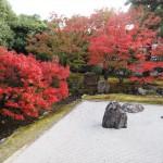 相国寺 開山堂庭園