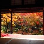 圓光寺 11月