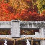 新宮神社 11月22日