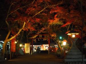 大原野神社 ライトアップ