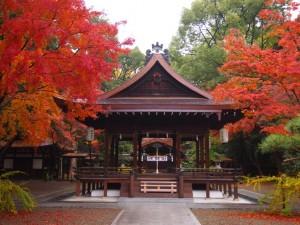 京都御苑 梨木神社 11月23日