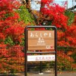 阪急嵐山駅 11月24日