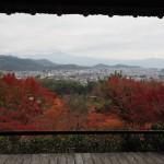 大河内山荘 11月