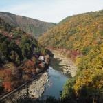 嵐山公園 11月25日