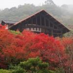 大山崎山荘美術館 11月26日