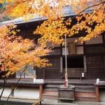 南禅寺 最勝院 11月26日
