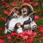 南禅寺 最勝院 11月26日OLYMPUS DIGITAL CAMERA
