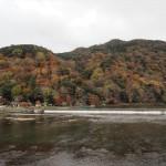 嵐山 11月26日