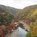 嵐山公園 11月26日