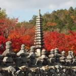 化野念仏寺 11月