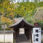 東福寺 偃月橋 11月27日
