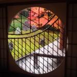 東福寺 光明院 11月27日