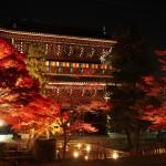 金戒光明寺 初のライトアップ 11月