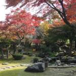 東福寺 盛光院 11月27日