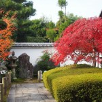 東福寺 霊雲院 11月27日