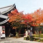 東福寺 天得院 11月27日
