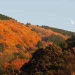 比叡山 11月28日