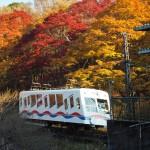 叡山ケーブル 11月28日