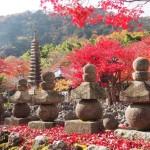 化野念仏寺 11月28日